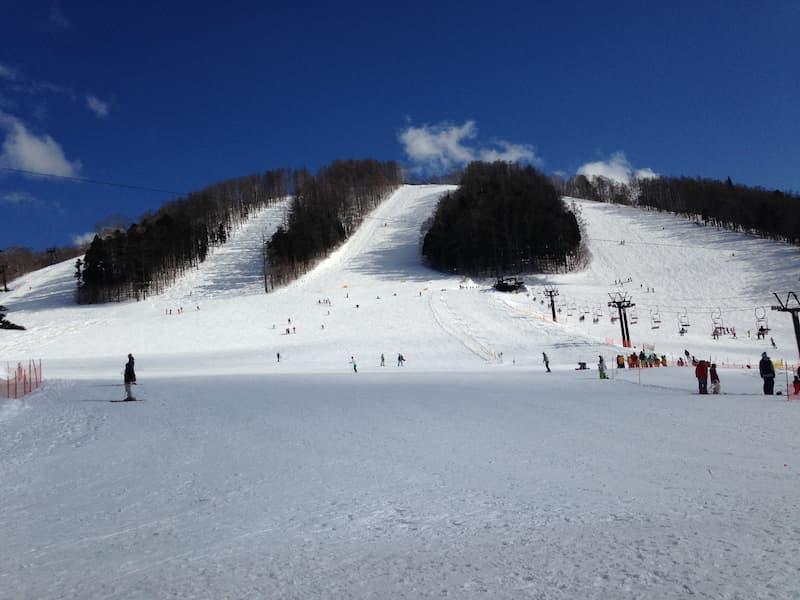 滑走レベルがバラバラでも楽しめる長野のスキー場