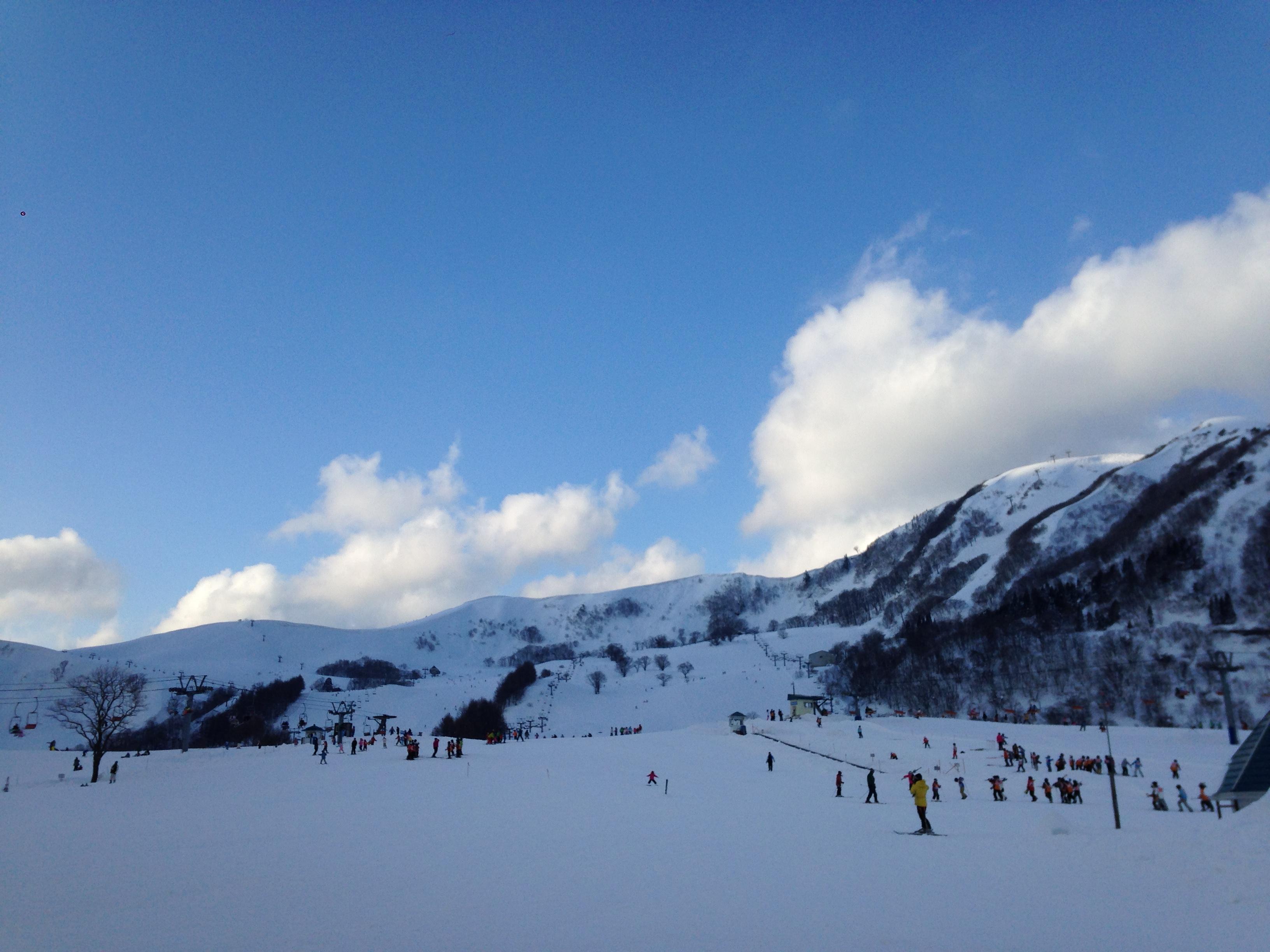牧場 場 但馬 公園 スキー