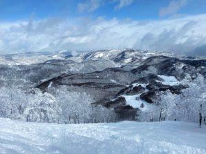 斑尾高原スキー場のツリーランコース