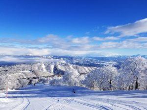 野沢温泉スキー場のコース
